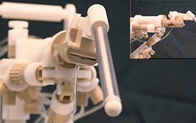 Diagnose prostaatkanker – Plastic robot
