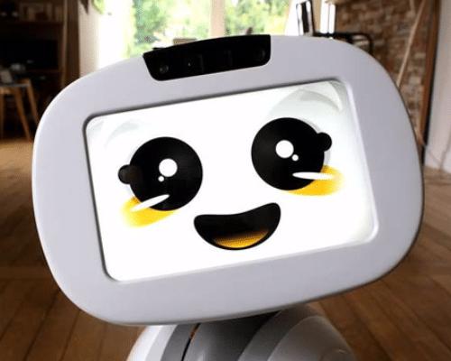 Lezing , keynot, robots in de zorg