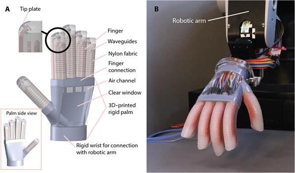 https://www.3ders.org/articles/20161216-cornell-researchers-use-3d-printing-to-create-soft-robotic-hand-that-feels-like-a-human.html