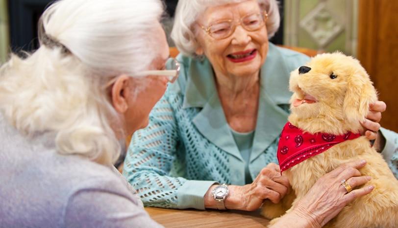 Interactieve hond voor gezelschap