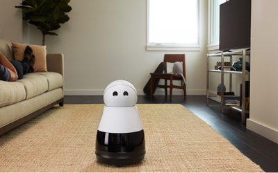 Een slim huis met een robot, Wat denkt de Nederlander