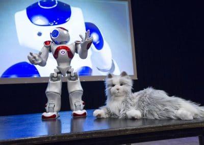 Interactieve-workshop-over-robots